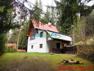 Chata uprostred lesa pri Štrbe