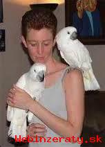 Láskyplný Deštník Kakadu Papoušci
