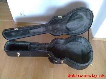 12 strunová gitara