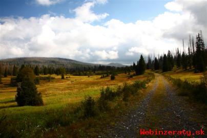 Kupim Pozemok v obci Teriakovce