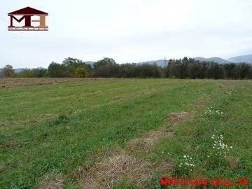 Predaj pozemkov na stavbu domov Krupina