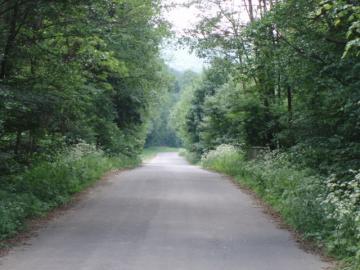 Predam lesne a travnate pozemky v tichom