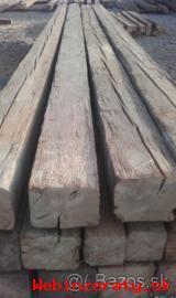 Kúpa starého dreva