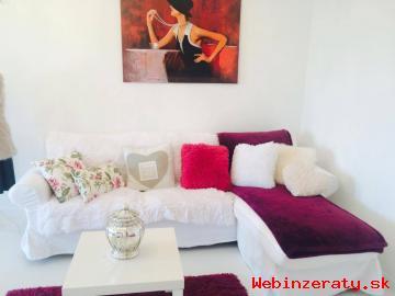 1,5 izbový byt Laca Novomestského