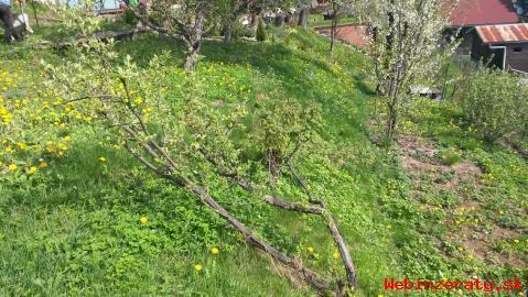Chatka so záhradou-Žilina, Mojšová Lúčka
