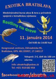 Exotika Bratislava 11. 1. 2014