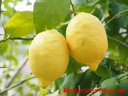 Citrusy pre vás