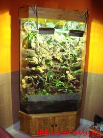 Výroba terária -akvária, Luxusné terária