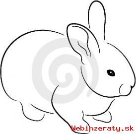 Zdrobnelé králiky